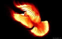 The Holy Spirit as the Fire of Love - beautiful epistle